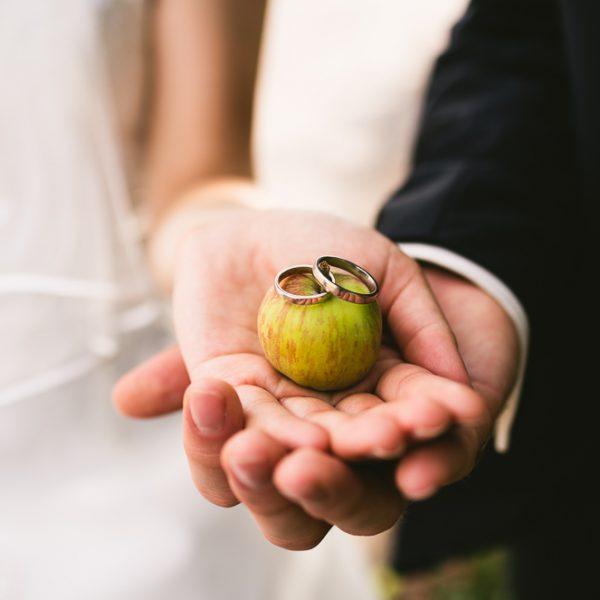 Apfelringe und andere Details, Hochzeit Rittergut Positz - Fotograf Jena Thüringen