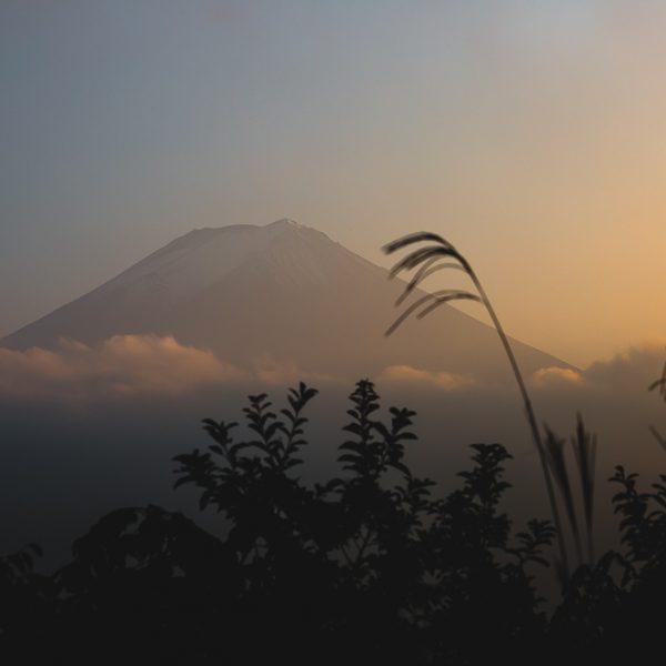 Besteigung des Fuji-san, naja so halb - Japan