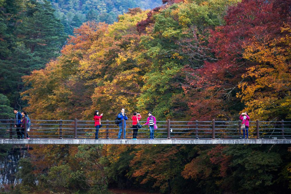 Momiji Japan im Herbst, Reisefotografie, shirakawago