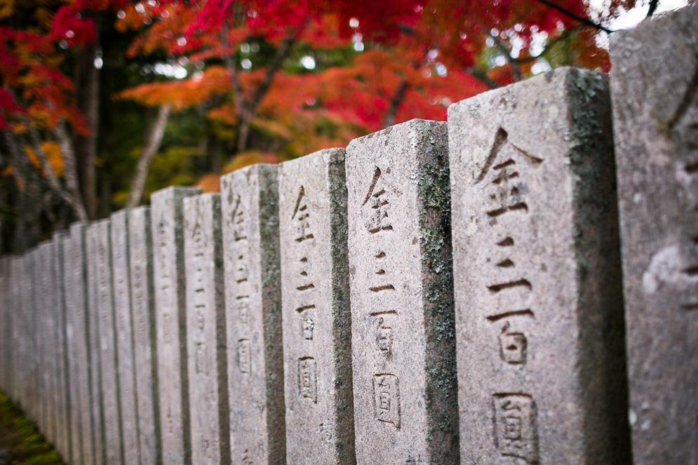 Momiji Japan im Herbst, Reisefotografie, koyasan